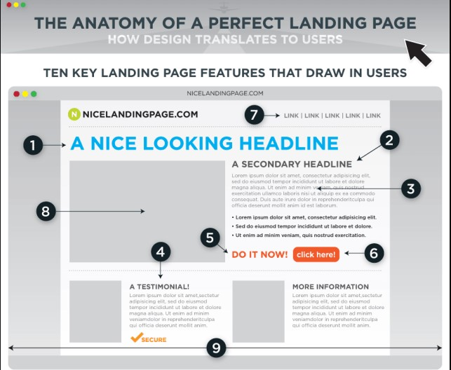 The anatomy of perfect landing page - Digikarma